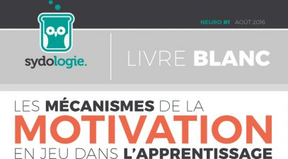 banniere_livre_blanc-motivation