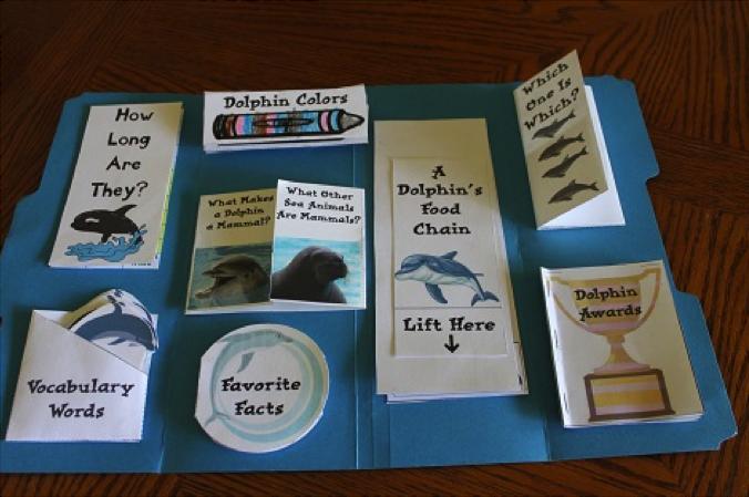 Les lapbooks : un outil ludique pour apprendre et mémoriser - Sydologie